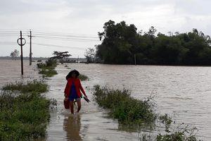 Quảng Nam, Quảng Ngãi nỗ lực phòng chống lụt, bão