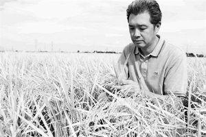 Kịch bản chống biến đổi khí hậu của Nhật Bản