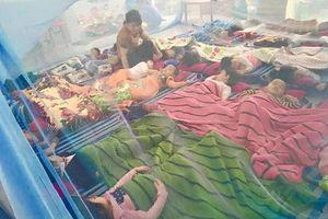Ngành giáo dục Đà Nẵng đồng loạt tuyên truyền phòng chống sốt xuất huyết