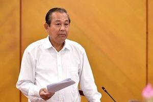 Phó Thủ tướng chỉ đạo thanh tra toàn diện việc quản lý, sử dụng đất rừng tại Sóc Sơn
