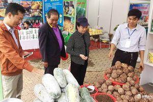 250 gian hàng tham dự Hội chợ nông nghiệp công nghệ các tỉnh miền Trung
