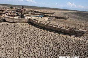 Biến đổi khí hậu - nguy cơ lớn nhất đe dọa thế giới trong thế kỷ 21
