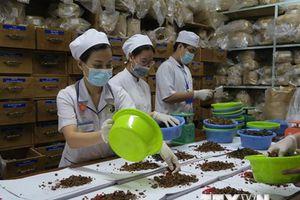 Vận dụng thế mạnh y học cổ truyền Hàn-Việt điều trị các bệnh mãn tính