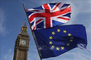 EU đề nghị mối quan hệ đối tác 'chưa có tiền lệ' với Anh