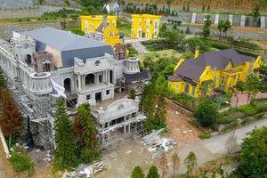 Phó Thủ tướng yêu cầu Bộ Công an cùng Hà Nội báo cáo vụ 'xẻ thịt' rừng Sóc Sơn
