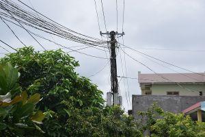 Quảng Nam: Đứt đường dây điện, một người đàn ông tử vong