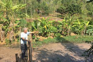 Sơn La: Người dân 'kêu cứu' bên dòng suối ô nhiễm