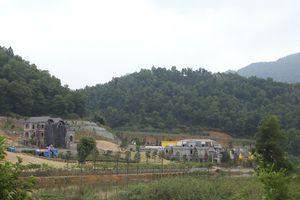 Phó Thủ tướng chỉ đạo thanh tra toàn diện việc quản lý, sử dụng đất rừng ở huyện Sóc Sơn