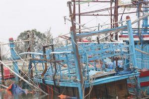 Quảng Nam: Một ngư dân bị sóng cuốn mất tích