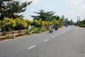 Những đoạn đường xanh - sạch - đẹp