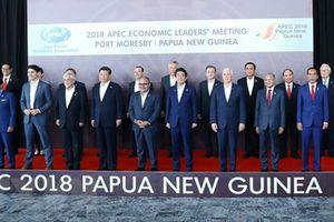 Việt Nam - APEC: 20 năm hợp tác và phát triển