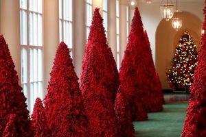 Nhà Trắng lộng lẫy với cây thông Giáng sinh màu đỏ