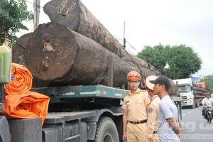 Chặn 4 xe container chở hàng chục cây gỗ trên QL1A