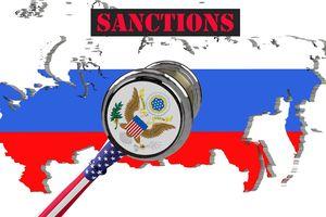 Phương Tây chia rẽ vì áp đặt trừng phạt Nga?