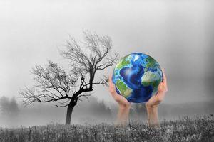 Thế giới đang chậm chân trong cuộc chiến chống biến đổi khí hậu