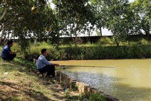 Bắc Ninh: Trang trại VAC sinh thái, đích đến của nông dân