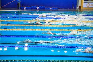 Nhiều kỷ lục mới được xác lập ở môn lặn