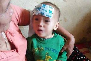 Yên Bái: Bé gái sốt cao bị bỏ rơi trong bụi rậm bên đường