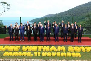 Việt Nam - APEC sau 20 năm: 'Nếu muốn đi xa, hãy đi cùng nhau'