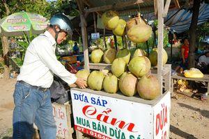 Dừa sáp Trà Vinh luôn hút hàng, giá bán khá cao
