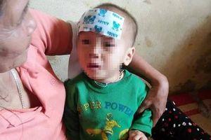 Nhói lòng bé gái 15 tháng tuổi bị bỏ rơi ở bụi tre