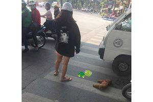 Chó cưng bất ngờ lao xuống đường bị xe cán chết, cô gái trẻ gào khóc