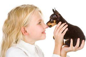Người nuôi chó cưng cần biết những điều này