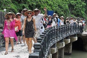 Hơn 14 triệu lượt khách quốc tế đã đến Việt Nam trong năm nay