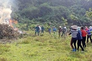 Chương Mỹ: Diễn tập chữa cháy rừng tại xã Tân Tiến