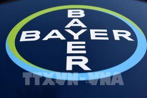 Tập đoàn hóa chất và dược phẩm Bayer sẽ cắt giảm 12.000 việc làm