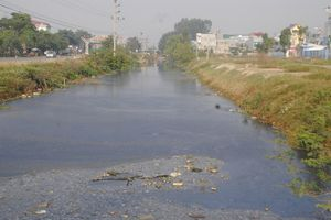 Hải Dương: Nhiều tuyến kênh phục vụ sản xuất nông nghiệp bị ô nhiễm nặng
