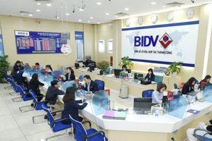 Ngân hàng Nhà nước: Việc bắt ông Trần Bắc Hà 'không ảnh hưởng đến hoạt động của BIDV'