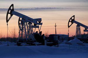 Giá dầu hồi phục nhờ tín hiệu giảm sản lượng từ Nga