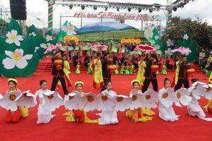 Bình Liêu: Trắng tinh khôi mùa hoa sở