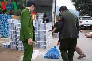 Quảng Bình: Bắt vụ vận chuyển trái phép động vật hoang dã
