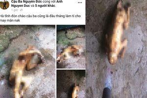 Truy tìm nam thanh niên đăng ảnh giết khỉ lên Facebook