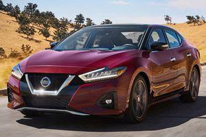 Sedan Nissan Maxima 2019 mới có gì để 'đấu' Toyota Avalon?