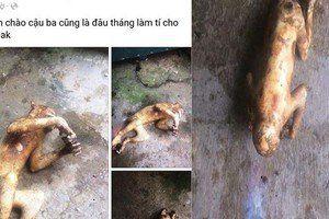 Điều tra vụ thanh niên khoe chiến tích giết khỉ làm thịt trên Facebook