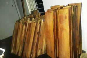 Phát hiện khối lượng gỗ không rõ nguồn gốc giấu trong kho nhà máy thủy điện Sông Tranh 3