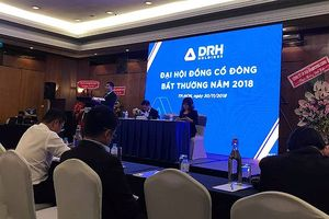 Năm 2018, DRH Holdings ước đạt lợi nhuận 72 tỷ đồng, chỉ hoàn thành 40% kế hoạch