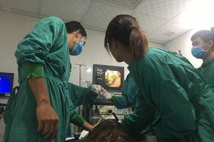 Bỏ tiền túi cứu rùa xanh 'ngộ độc' rác thải du lịch