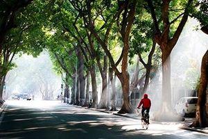 Thời tiết 2/12: Hà Nội lạnh về đêm và sáng sớm, Nam Bộ có mưa dông