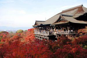5 ngôi chùa cổ tuyệt đẹp làm xiêu lòng du khách khi đến xứ sở hoa anh đào