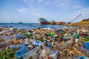 Rác thải nhựa có thời gian phân hủy lâu nhất, 'tuổi thọ' gấp 10 lần con người