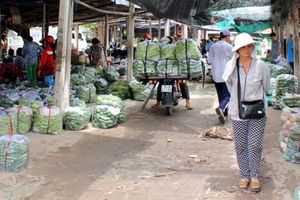 Khát vọng thay đổi, Tây Ninh xin vay 100 tỷ xây chợ đầu mối nông sản