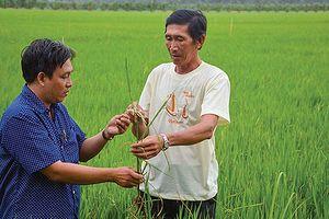 Bắc Ninh nâng cao năng lực cạnh tranh