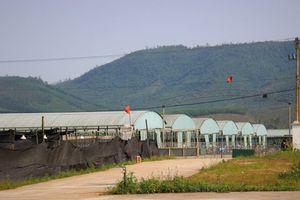 Dự án nuôi bò hơn 4.500 tỷ ở Hà Tĩnh giờ ra sao?