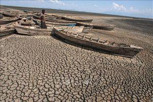 Hàng loạt hậu quả từ biến đổi khí hậu: Hãy hành động trước khi quá muộn!