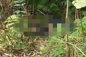 Lào Cai: Tá hỏa phát hiện thanh niên tử vong trong bụi cây