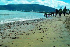 Doanh nghiệp đua nhau xin nhấn chìm hàng triệu m3 bùn cát xuống biển